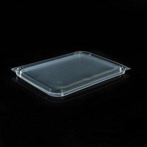 Набор одноразовых крышек для контейнера, 17,9?13,2 см, 50 шт, цвет прозрачный