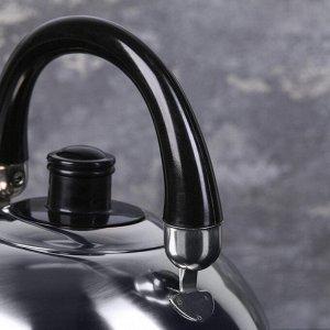 Чайник со свистком Доляна «Чёрная ночь», 1,9 л, фиксированная ручка