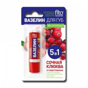 Вазелин для губ «Сочная клюква» от обветривания, 4.5 гр