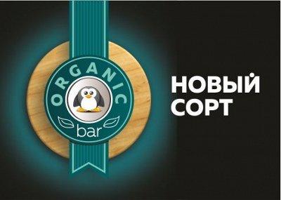ORGANICbar для самых изысканных вкусов — НОВИНКА ORGANICbar 1,3 кг (ванны) — Диетические кондитерские изделия