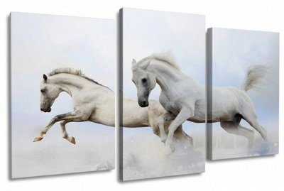 ♥ Картины и Часы - 63 ♥ Новинки!  — Модульные картины-Лошади — Картины
