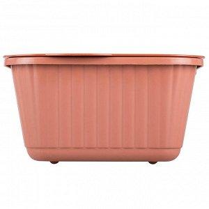 Лоток для выращивания зеленого лука М6716 коричневый