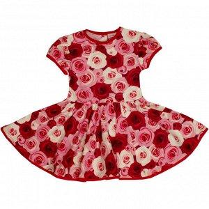 Платье 7028/24 (розы)