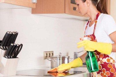 №15 All❤ASIA. Лучшее в одной! NEW — Чистящие средства для кухни — Чистящие средства