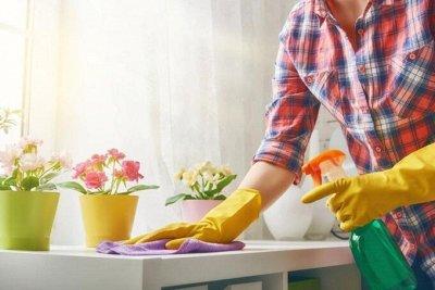 №15 All❤ASIA. Лучшее в одной! NEW — Универсальные чистящие средства — Чистящие средства