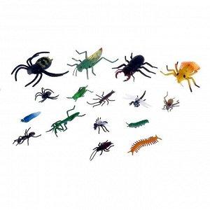 Набор насекомых «Жучки», 16 фигурок