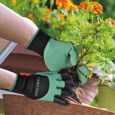 Интересные товары для дома, детей, красоты — Дача и Сад — Сад и огород