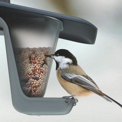Выходные с комфортом! Садовые тележки! — Кормушки для птиц — Сад и огород