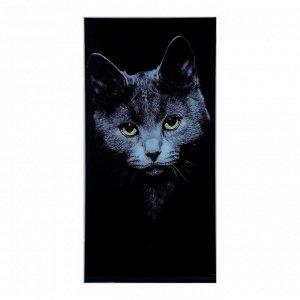 """Картина на стекле """"Кот"""" 100*50см"""
