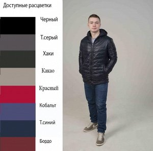"""Куртка мужская Спринг"""" с капюшоном"""" (t до -10)"""