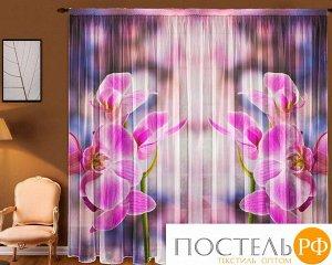 Т0036 тюль, (1,45х2,70+/-5см)х2полотна Орхидея