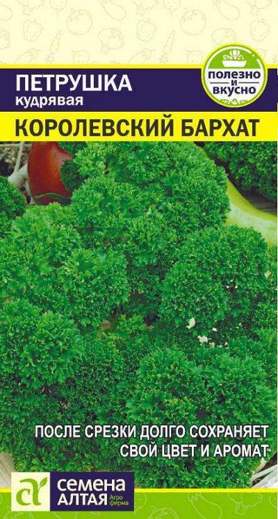Семена Алтая. Отличная всхожесть,Огромный выбор сортов. — Зелень — Семена зелени и пряных трав