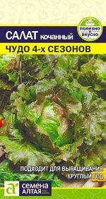 Зелень Салат Чудо 4 сезонов/Сем Алт/цп 0,5 гр.