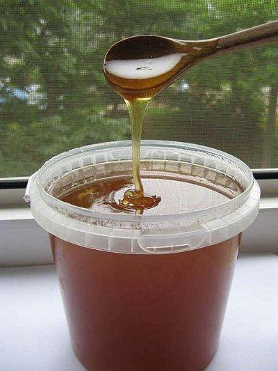 Мегараспродажа ЭКОпродуктов - 104 — Мёд качественный, зрелый. Крем мед (мусс мед). — Мед