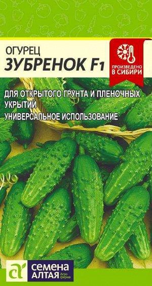 Огурец Зубренок F1/Сем Алт/цп 0,3 гр.