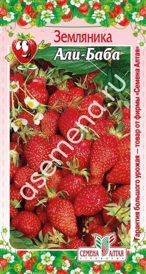 Алтайские семена — Ягода — Семена ягод