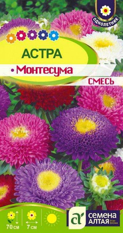 Распродажа товаров в наличии. Обувь:) Одежда:) Семена) — Семена цветов