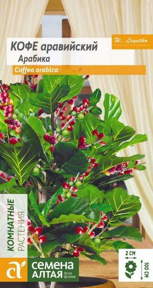 Цветы Кофе Арабика аравийский/Сем Алт/цп 5 шт.