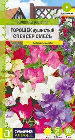 Душистый горошек Спенсер смесь/Сем Алт/цп 0,5 гр. Вьющиеся растения