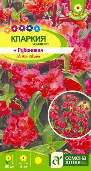 Цветы Кларкия Рубиновая изящная/Сем Алт/цп 0,2 гр.