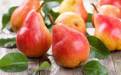Сибирские Саженцы плодово-ягодных 🍏 🍒 * Осень — Груша — Плодово-ягодные