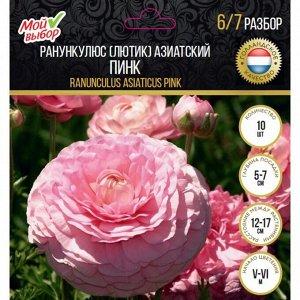 Ранункулюс (Лютик) азиатский  Пинк, р-р 7/8, 10 шт
