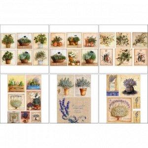 Набор декупажных карт 6 шт «Травы Прованса»