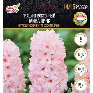 Гиацинт восточный Чайна Пинк, р-р 14/15, 5 шт