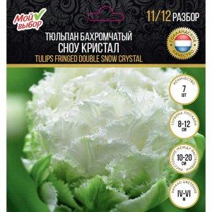 Тюльпан бахромчатый Сноу Кристал, р-р 11/12, 7 шт