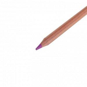Карандаши художественные цветные «Мастер-класс», 12 цветов