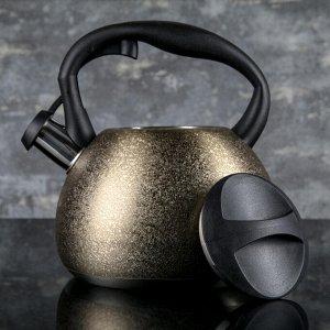 Чайник со свистком 3 л «Бархат», индукция, цвет МИКС