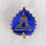 Значок «Владивосток» 2018373
