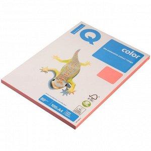"""Бумага IQ """"Color neon"""" А4, 80г/м2, 100л. (розовый неон)"""