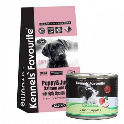 ✔Корма премиум класса д/кошек и собак + Витамины.✔Новинки!  — KENNELS` FAVOURITE. Корм для взрослых собак и щенков. — Корма