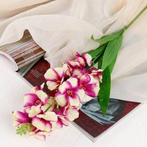 Цветы искусственные Орхидея Дендробиум5,5*90 см, бело-фиолетовый