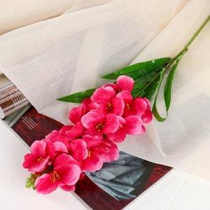Цветы искусственные Орхидея Дендробиум5,5*90 см, розовый
