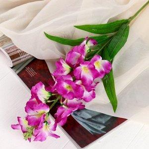 Цветы искусственные Орхидея Дендробиум5,5*90 см, сиреневый