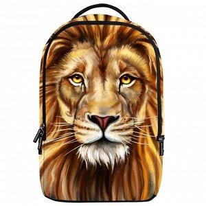 Школьные рюкзаки 3D Danny bear - DB198409