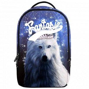 Школьные рюкзаки 3D Danny bear - DB198408