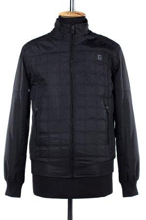 06-0183 Куртка мужская демисезонная (синтепон 100) Плащевка черный
