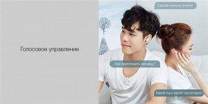 Беспроводные наушники Xiaomi Mi AirDots
