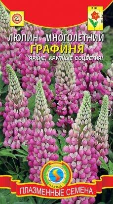 Цветы Люпин Графиня ЦВ/П (ПЛАЗМА) розовый многолетнее до 1м