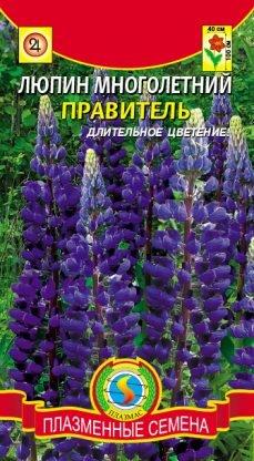 Цветы Люпин Правитель ЦВ/П (ПЛАЗМА) синий многолетнее до 1м