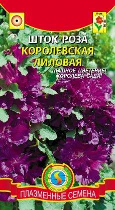 Цветы Шток-роза (Мальва) Королевская Лиловая ЦВ/П(ПЛАЗМА)
