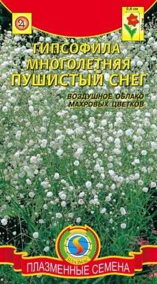 Цветы Гипсофила Пушистый снег ЦВ/П (ПЛАЗМА) многолетнее до 1м