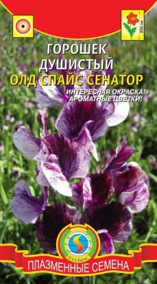 Цветы Горошек Душистый Олд Спайс Сенатор ЦВ/П (ПЛАЗМА) однолетнее до 2,5м