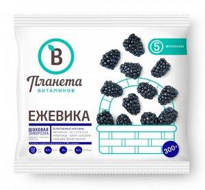 Ежевика, Планета Витаминов, 300 г, (20)