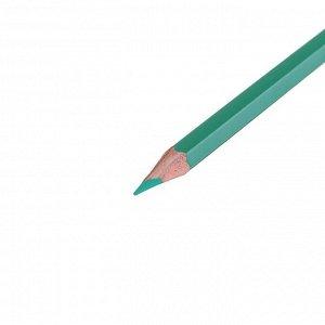 Карандаши художественные цветные «Сонет», 24 цвета