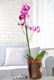 Кашпо Кашпо 2,1л д/орхидей [MIA] БАКЛАЖАН. Размер150х105,7х160 мм