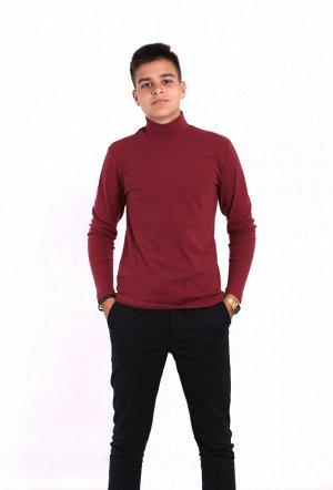 Водолазка мужская 1401-016 темно-бордовый